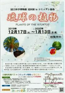 12170113琉球の植物