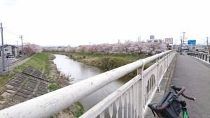 笹原川_200405_0010
